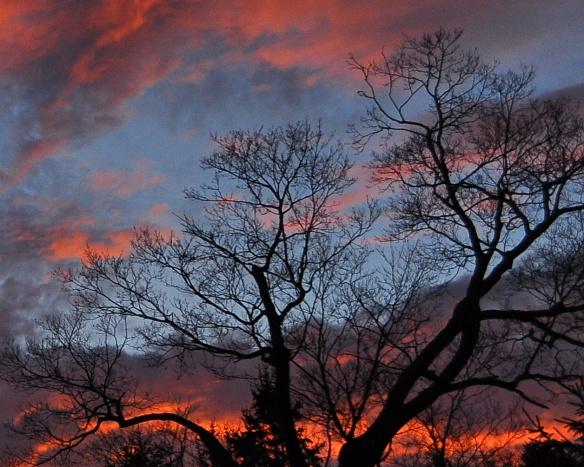 Sunrise27Nov11#027E2c8x10ps