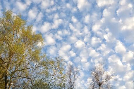 CloudsPM11May14#128E