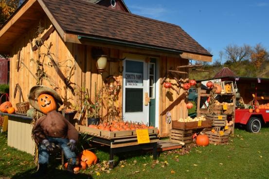 PumpkinStand24Oct14#039Ec4x6