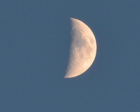 Moon28Nov14#061E2c8x10