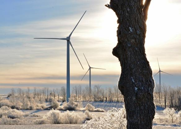 Windmills21Jan15#012E3c5x7