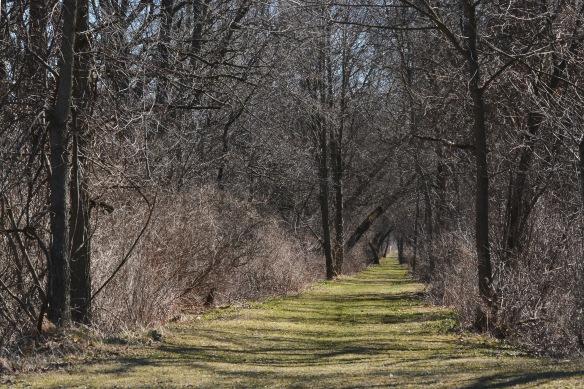 trail20Mar16#7320E2c4x6