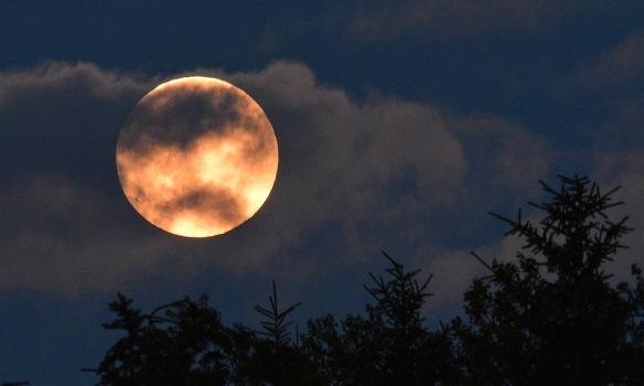 Moon8July17#0439E2c3x5