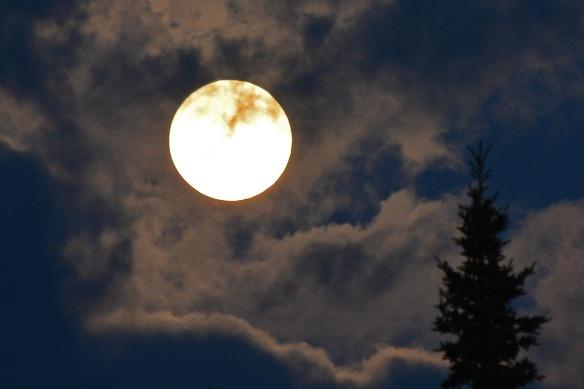 Moon8July17#0483E2c4x6