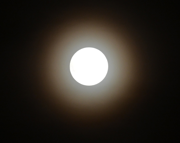 Moon3Nov17#5700E2c8x10