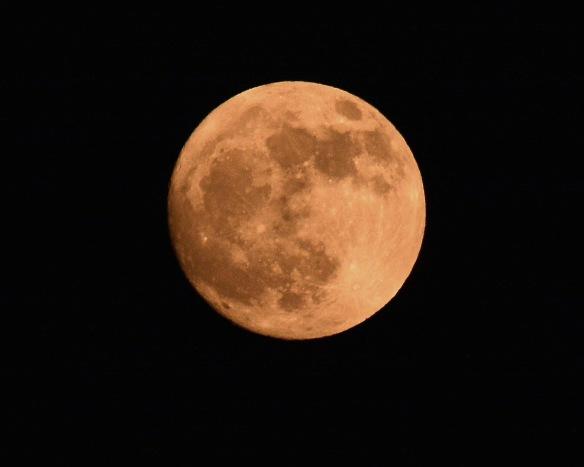 Moon21Dec18#1934E5c8x10
